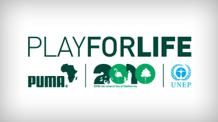 2010 - Play for Life